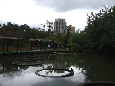 植物園内の風景