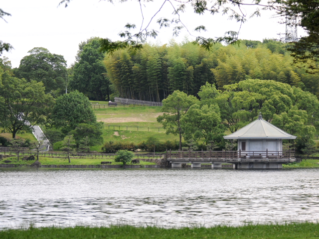 山田池公園 2012/07/02 Photo by Kohyuh