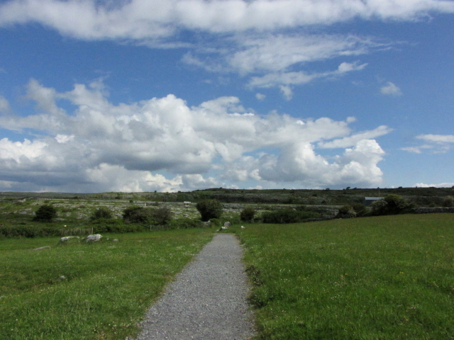 バレン高原 アイルランド The Burren, Ireland 2009/06/06 Photo by Kohyuh