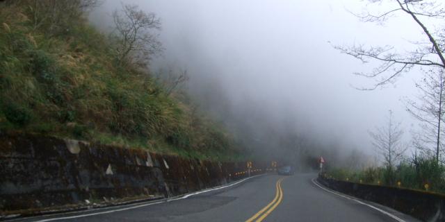 塔塔加の道は霧多し 2012/03/03 Photo by Kohyuh
