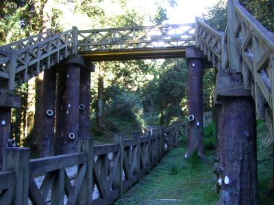 森林鉄道を越えて 2012/03/04 Photo by Kohyuh
