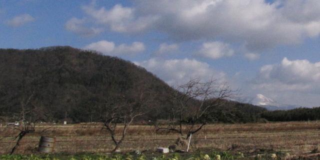 オオワシが毎年渡来する山本山 2013/01/17 Photo by Kohyuh