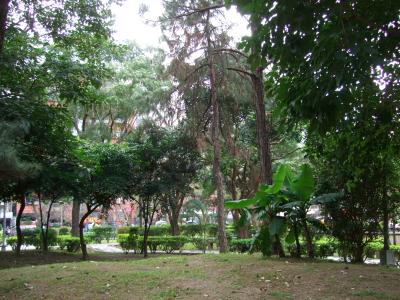 交流協会近くの公園 Park near by Interchange Association